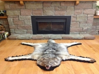 Genuine Arctic Wolf Fur Rug